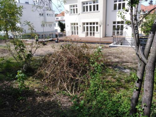 Zahrada v Dejvicích - před revitalizací