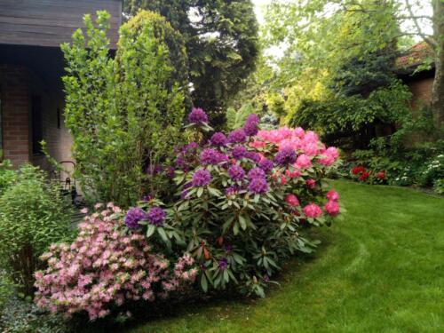 Námi udržovaná zahrada