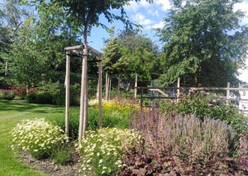 Námi založená a udržovaná zahrada